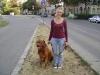 Hundeservice Wien - Gassigeher Wien