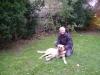 Hunde Gassigehservice Wien - Hundebetreuung Stieglecker