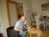 Mobiler Hundesitter - Dositting Vorort