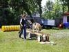 Welpentraining Fotos - Hundebetreuung Stieglecker - Outdoor Hundeschule
